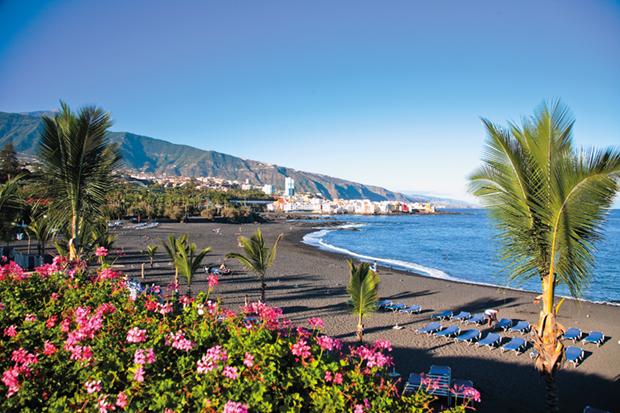 Tenerife_veci